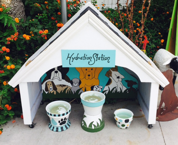 Dog-Hydration-Station-Ch-Hands